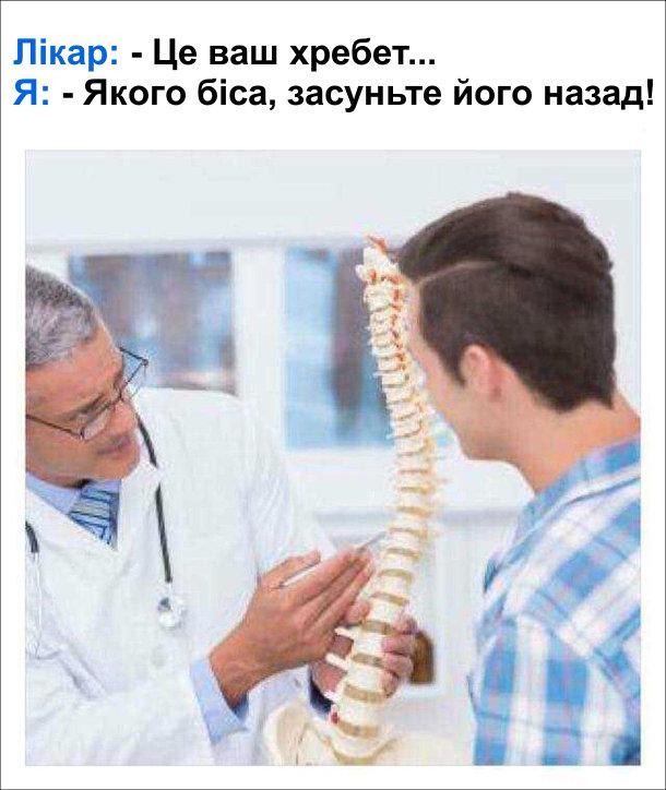 Жарт про ортопеда. Лікар, показуючи макет хребта: - Це ваш хребет... Я: - Якого біса, засуньте його назад!