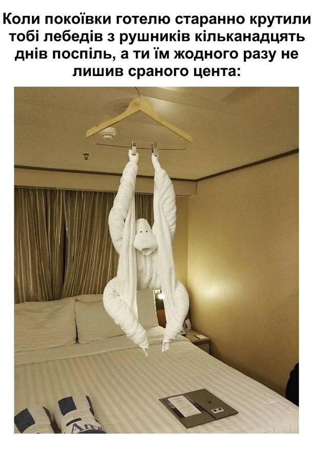 Фігурки з рушників в готелі. Коли покоївки готелю старанно крутили тобі лебедів з рушників кільканадцять днів поспіль, а ти їм жодного разу не лишив сраного цента, в останній день скрутили мавпу