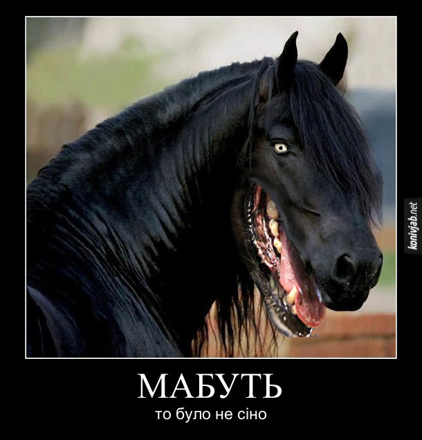 Прикольний фотошоп. Голова коня з пащею собаки. Мабуть то було не сіно
