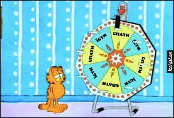 Жарт про Гарфілда. Кіт Гарфілд крутить колесо фортуни де тільки варіанти їсти і спати