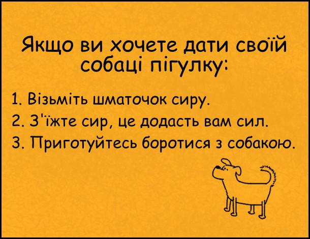 Жарт. Як дати собаці пігулку. Якщо ви хочете дати своїй собаці пігулку: 1. Візьміть шматочок сиру. 2. З'їжте сир, це додасть вам сил. 3. Приготуйтесь боротися з собакою.