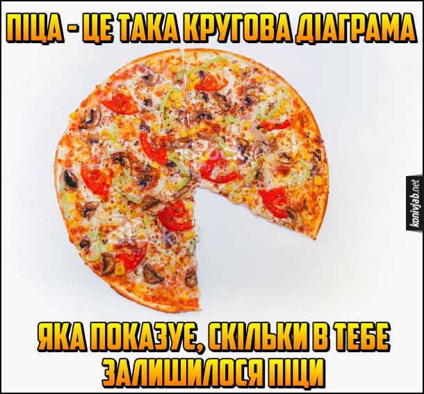 Жарт про піцу. Піца - це така кругова діаграма, яка показує, скільки в тебе залишилося піци
