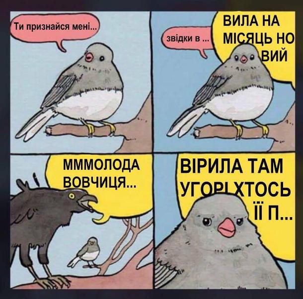 Прикол. Що співають пташки. Соловейко співає: - Ти признайся мені звідки в... Тут коло нього сідає ворона і співає: - Вила на місяць новий мммолода вовчиця. Вірила там угорі хтось її п...
