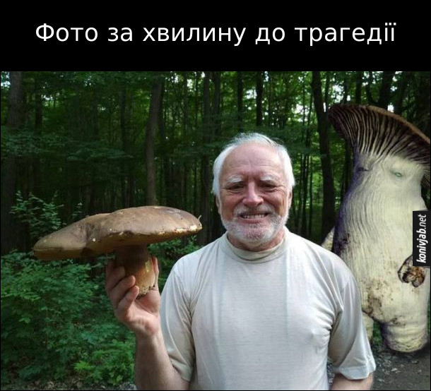 Мем Гарольд з грибом в руці, а до нього ззаду підкрадається гіганський ходячий гриб (певно родич того гриба). Фото за хвилину до трагедії