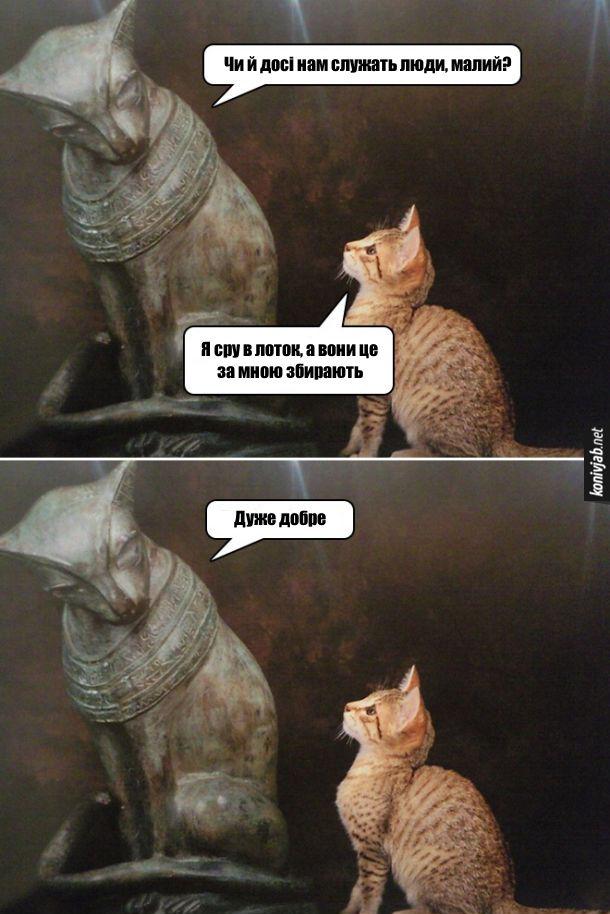Прикол. Кіт в Стародавньому Єгипті. Стародавньоєгипетська кішка питає в сучасного кота: - Чи й досі нам служать люди, малий? Кіт: - Я сру в лоток, а вони це за мною збирають. - Дуже добре