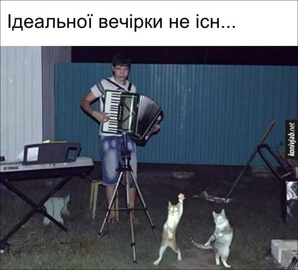 Прикол: Найкраща вечірка. Ідеальної вечірки не існ... (замовк, бо побачив вечірку, де хлопець грає на акордеонф, а два коти танцюють)