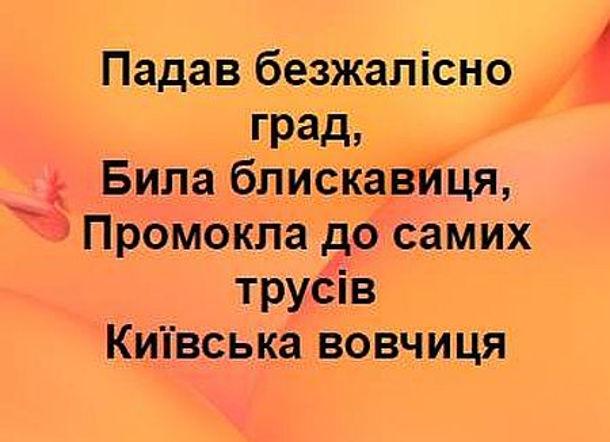 Прикол Злива в Києві. Падав безжалісно град, била блискавиця. Промокла до самих трусів київська вовчиця