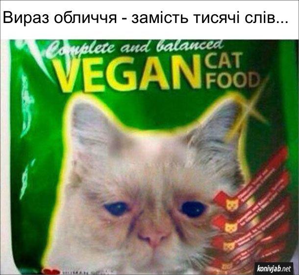 Жарт, прикол. Веганський корм для котів. на упаковці зображений сумний кіт. Вираз обличчя - замість тисячі слів...