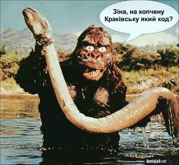"""Жарт про Кінг-Конга. Кінг-Конг тримає в руках вбитого удава і гукає: - Зіна, на копчену Краківську який код? (ніби продавчиня в супермаркеті). Кадр з фільму """"Кінг-Конг"""""""