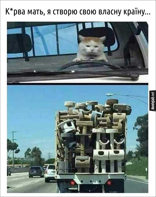 Дотеп про кота. Кіт за кермом везе повну вантажівку котяжих будинків. Кіт: - Курва мать, я створю свою власну країну...