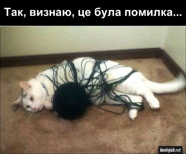 Прикол. Кіт і клубок. Кіт грався з клубком, але заплутався в нитках. Думає: - Так, визнаю, це була помилка...