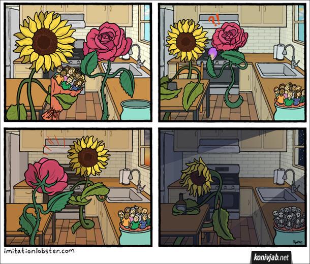 Комікс Якби квіти були людьми. Десь в паралельній реальності: якби квіти і люди помінялися місцями. Соняшник подарував троянді букет людей. Якось троянда побачила на соняшнику листок з іншої квітки, запідозрила в зраді і пішла від нього. Соняшник сидить на кухні, бідкається і п'є алкоголь. А від букету з людей залишились лише скелети