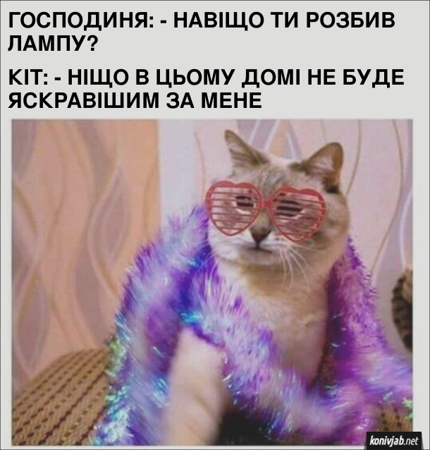 Прикол. Кіт розбив лампу. Господиня: - Навіщо ти розбив лампу? Кіт: - Ніщо в цьому домі не буде яскравішим за мене