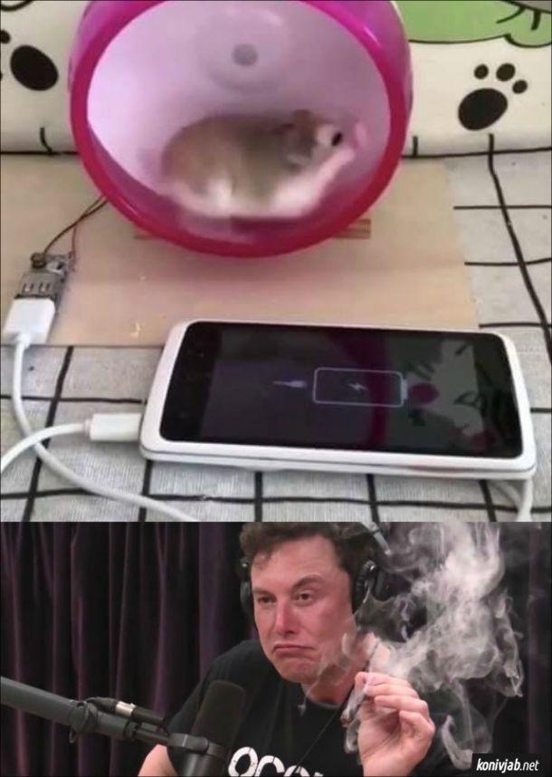 Прикол. Зарядний пристрій, де гризун бігає в колесі і заряджає мобільний телефон. Ілон Маск курить марихуану і здивовано дивиться на це