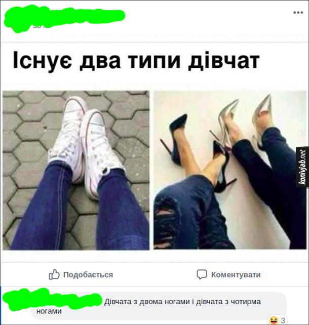 Існує два типи дівчат. Коментар: Дівчата з двома ногами і дівчата з чотирма ногами
