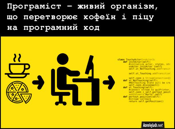 Жарт про програмістів. Програміст - живий організм, що перетворює кофеїн і піцу на програмний код