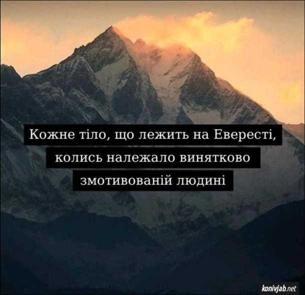 Анекдот про мотивацію. Кожне тіло, що лежить на Евересті, колись належало винятково змотивованій людині