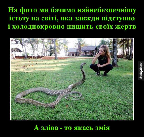 Прикол Найнебезпечніша істота. На фото ми бачимо найнебезпечнішу істоту на світі, яка завжди підступно і холоднокровно нищить своїх жертв. А зліва - то якась змія