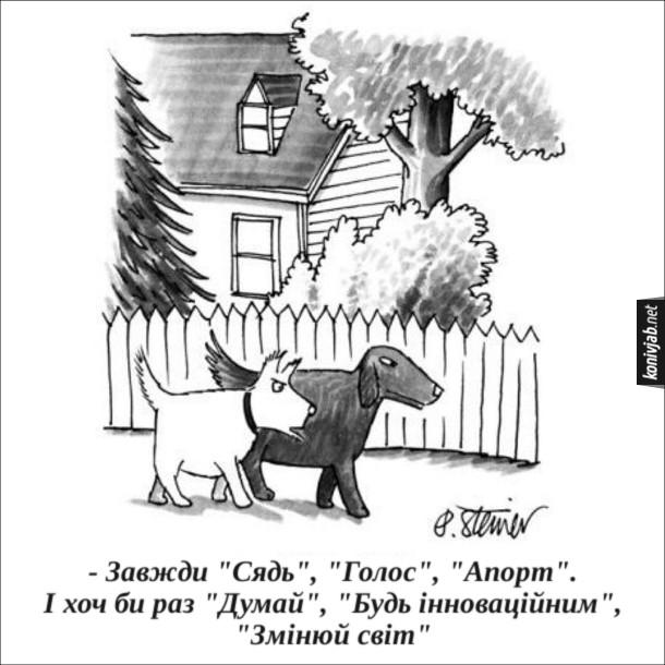 """Смішний малюнок про собак. Йдуть двоє собак, один з них бідкається: - Завжди """"Сядь"""", """"Голос"""", """"Апорт"""". І хоч би раз """"Думай"""", """"Будь інноваційним"""", """"Змінюй світ"""""""