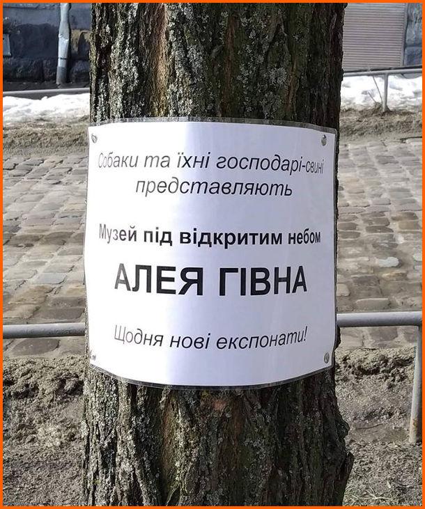"""Собачі какашки в парку. В парку на дереві висить табличка: """"Собаки та їхні господарі-свині представляють Музей під відкритим небом Алея Гівна. Щодня нові експонати"""""""