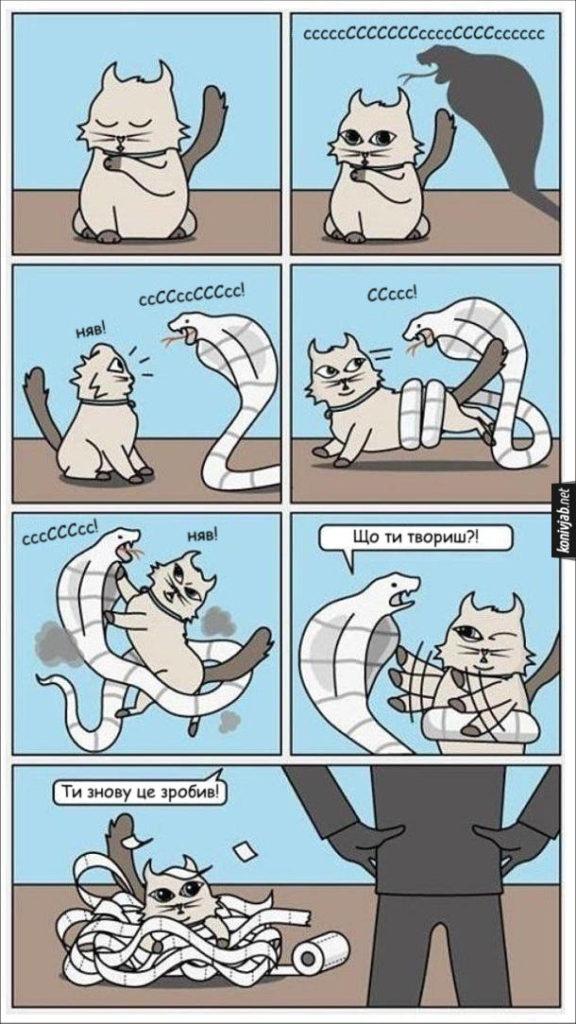 Комікс Кіт і туалетний папір. Кіт побачив змію і почав з нею битися. А насправді це не змія, а туалетний папір. Господар побачив порваний папір і каже до кота: - Що ти твориш?! Ти знову це зробив!