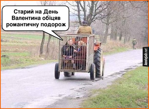 Смішне фото. День Валентина в селі. Дід їде на тракторі і везе двох бабів у клітці для худоби. Одна баба каже до другої: - Старий на День Валентина обіцяв романтичну подорож