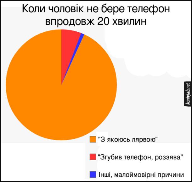 """Смішна діаграма про жіночу логіку. Що думає дружина, коли чоловік не бере телефон впродовж 20 хвидин. 94% - """"З якоюсь лярвою"""", 5% - """"Згубив телефон, роззява"""", 1% - Інші, малоймовірні причини"""
