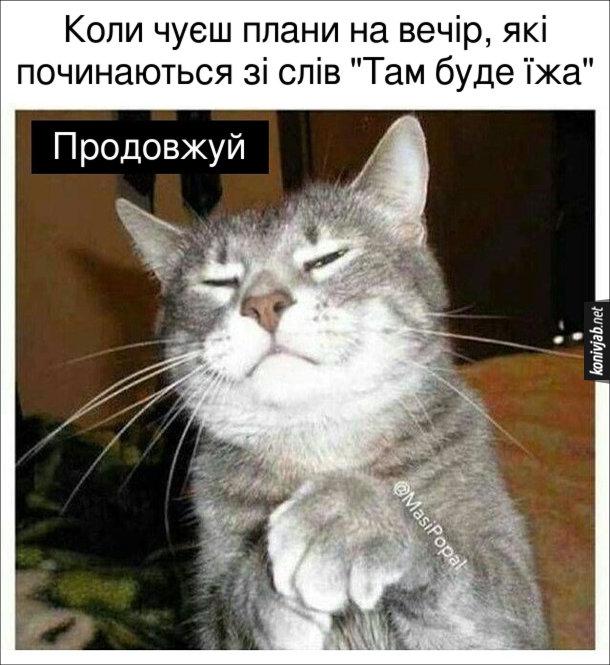 """Мем з котом. Коли чуєш плани на вечір, які починаються зі слів """"Там буде їжа"""" Кіт: - Продовжуй"""