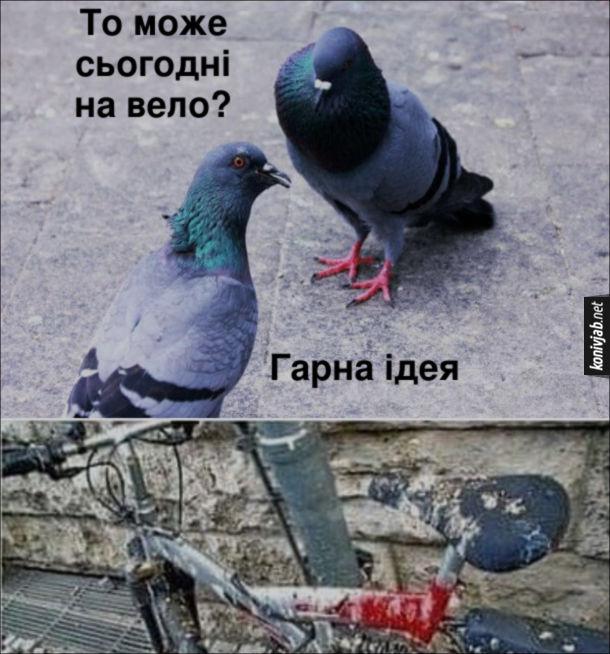 Жарт про голубів. Два голуби радяться. - То може сьогодні на вело? - Гарна ідея. Напаскудили на велосипед