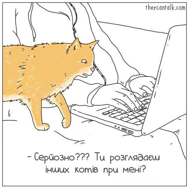 Жарт Ревнивий кіт. Господар сидить за ноутбуком. Підійшов кіт, глянув на монітор і шоковано питає: - Серйозно??? Ти розглядаєш інших котів при мені?