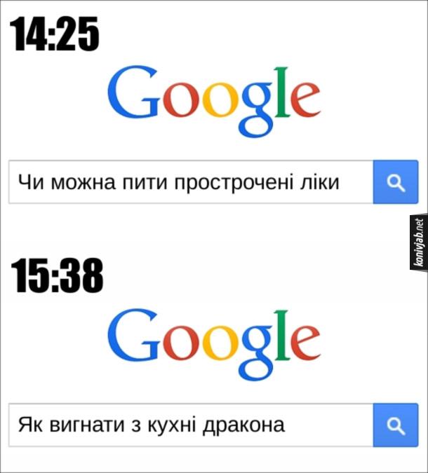 """Прикол Пошук в Google. О 14:24 гуглить"""" Чи можна пити прострочені ліки"""", а о 15:38 - """"Як вигнати з кухні дракона"""""""