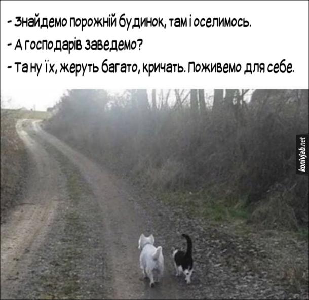 Смішне про кота і песика. Ідуть узліссям собака і кіт і балакають. - Знайдемо порожній будинок, там і оселимось. - А господарів заведемо? - Та ну їх, жеруть багато, кричать. Поживемо для себе.