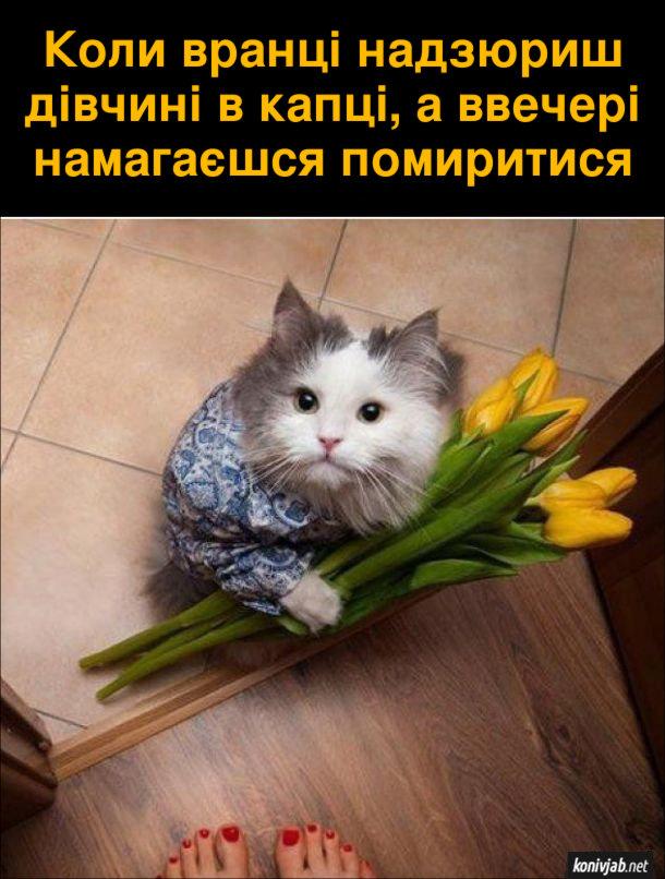 Прикол Кіт з букетом. Коли вранці надзюриш дівчині в капці, а ввечері намагаєшся помиритися. На порожі стоїть кіт з букетом квітів