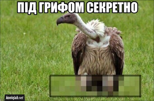 """Прикол каламбур. Фраза """"під грифом секретно"""" зображена буквально: гриф (птах) під яким щось розмито( секретно)"""