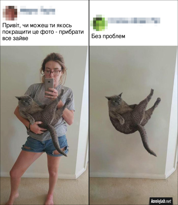 """Смішний фотошоп з котом. Дівчина надіслала своє селфі з котом до фотошопера із проханням: """"Привіт, чи можеш ти якось покращити це фото - прибрати все зайве"""". Фотошопер: """"Без проблем"""" і надіслав фото, де дівчини нема, а лише її кіт"""