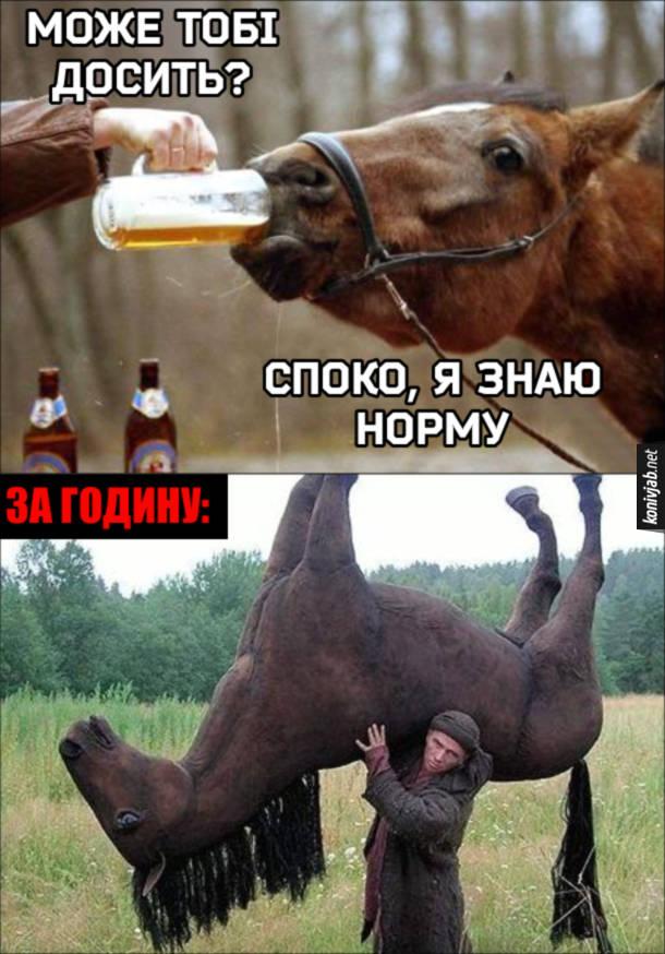 Кінь п'є пиво. Чоловік питає: - Може тобі досить? Кінь: - Споко, я знаю норму. За годину чоловік несе п'яного коня