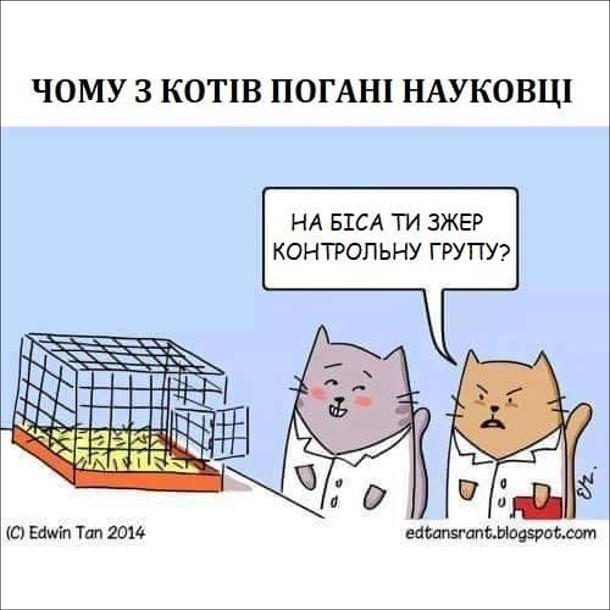 Смішний малюнок про котів вчених. Чому з котів погані науковці. Один з вчених з'їв піддослідних мишей. Підійшов інший вчений: - На біса ти зжер контрольну групу?