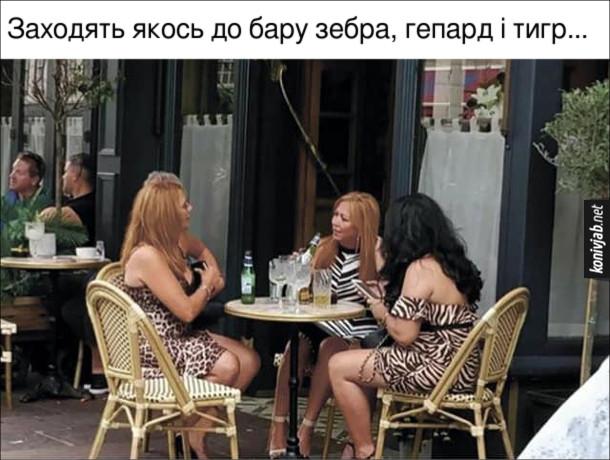 Жарт про сукні. Заходять якось до бару зебра, гепард і тигр... В барі сидять жіночки в сукнях з зебровим, гепардовим і тигровим забарвленням