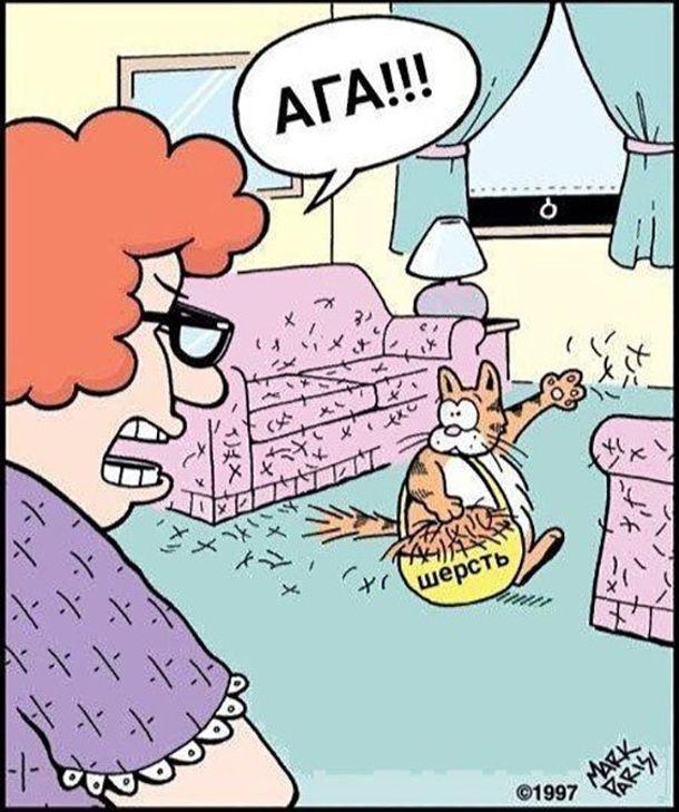 Смішний малюнок про котячу шерсть в квартирі. Господиня зайшла до кімнати і побачила, що кіт ходить з кошиком із шерстю і розкидає її на всі боки. Господиня: - Ага!!!