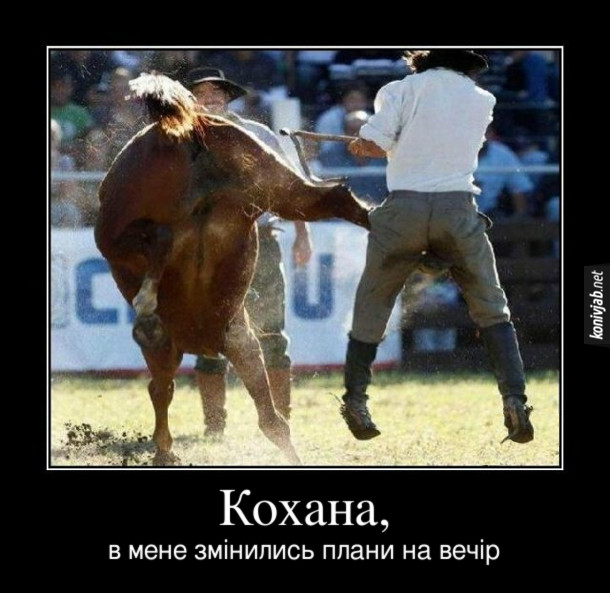 Демотиватор Родео. Кінь вдарив ковбоя копитом в пах. Кохана, в мене змінились плани на вечір.