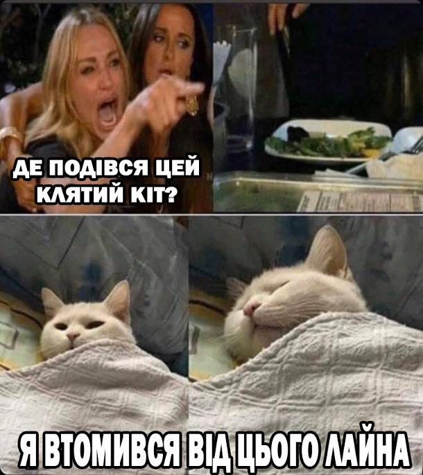 Мем Дівчина кричить на кота. Дівчина: - Де подівся цей клятий кіт? Кота нема за столом, він в цей час спить в ліжку: - Я втомився від цього лайна.