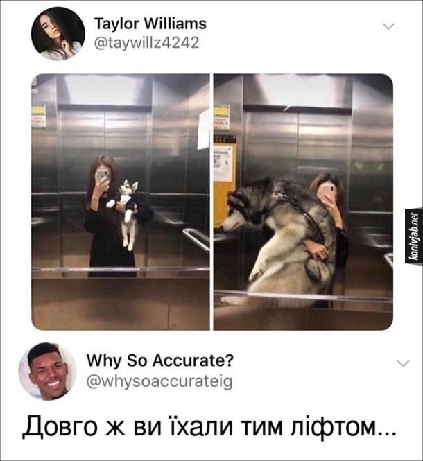 Прикол Селфі з собакою. Дівчина зробила дві фотки в ліфті - з маленьким песиком і коли він вже виріс. Комент: - Довго ж ви їхали тим ліфтом...