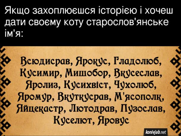 Смішне ім'я для кота. Якщо захоплюєшся історією і хочеш дати своєму коту старослов'янське ім'я, то ось такі варіанти: Всюдисрав, Ярокус, Гладолюб, Кусимир, Мишобор, Вкусеслав, Яролиз, Кусихвіст, Чухолюб, Яромур, Вкуткусрав, М'ясополк, Яйцекастр, Лютодрав, Пузослав, Куселют, Яровус