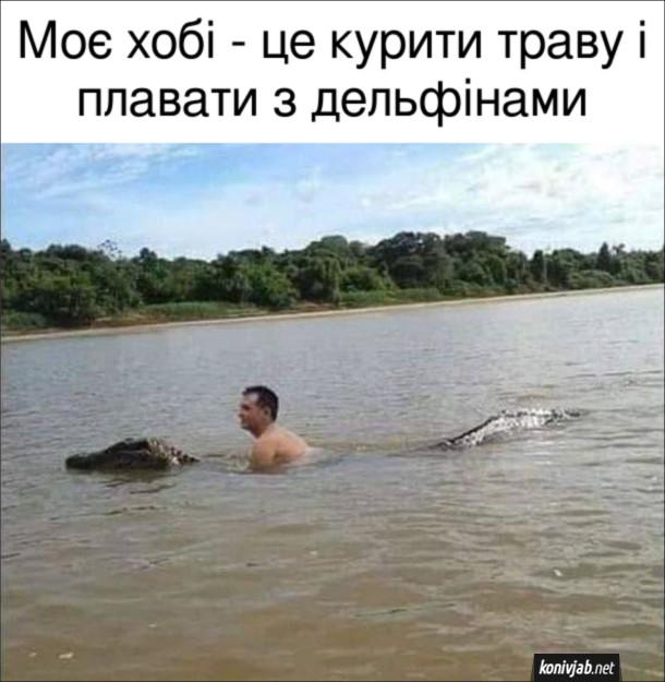 Прикол Плавання з крокодилом. Моє хобі - це курити траву і плавати з дельфінами