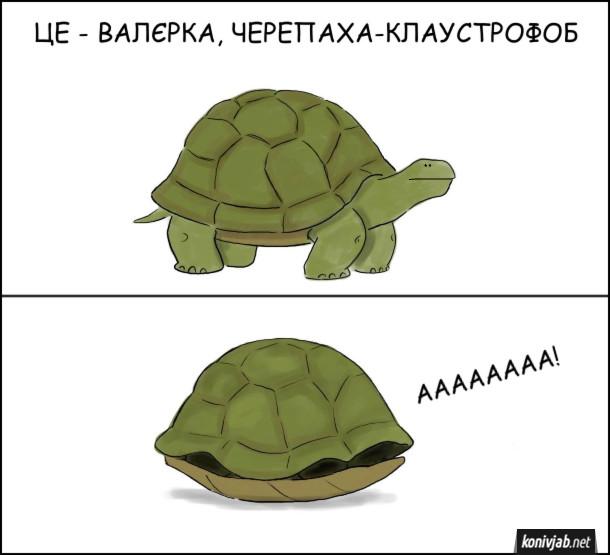 Смішний малюнок про черепаху. Це Валєрка, черепаха-клаустрофоб. Валєрка заліз впанцир і кричить від страху: - АААААААА!