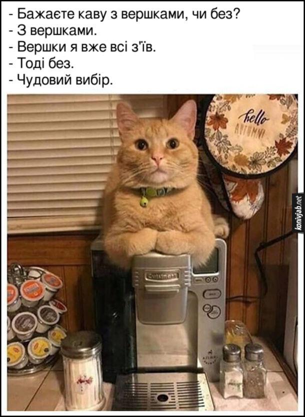 Кіт сидить на кавоварці. - Бажаєте каву з вершками, чи без? - З вершками. - Вершки я вже всі з'їв. - Тоді без. - Чудовий вибір.