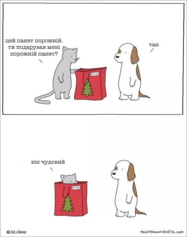 Жарт Кіт і пакет. Кіт: - Цей пакет порожній. Ти подарував мені порожній пакет? Собака: - Так. Кіт, залізаючи в пакет: - Він чудовий