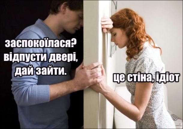 Мем Посварені. -Заспокоїлася? Відпусти двері, дай зайти. - Це стіна, ідіот