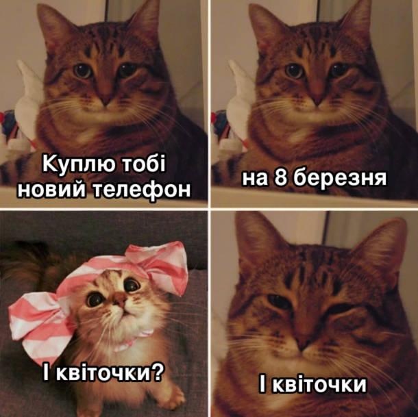 Мем про 8 березня. Кіт: Куплю тобі новий телефон на 8 березня. Кішка: І квіточки? Кіт: І квіточки.