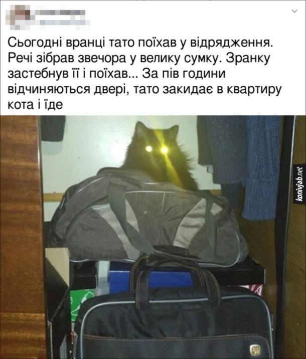 Прикол Кіт заліз у сумку. Сьогодні вранці тато поїхав у відрядження. Речі зібрав звечора у велику сумку. Зранку застебнув її і поїхав... За пів години відчиняються двері, тато закидає в квартиру кота і їде